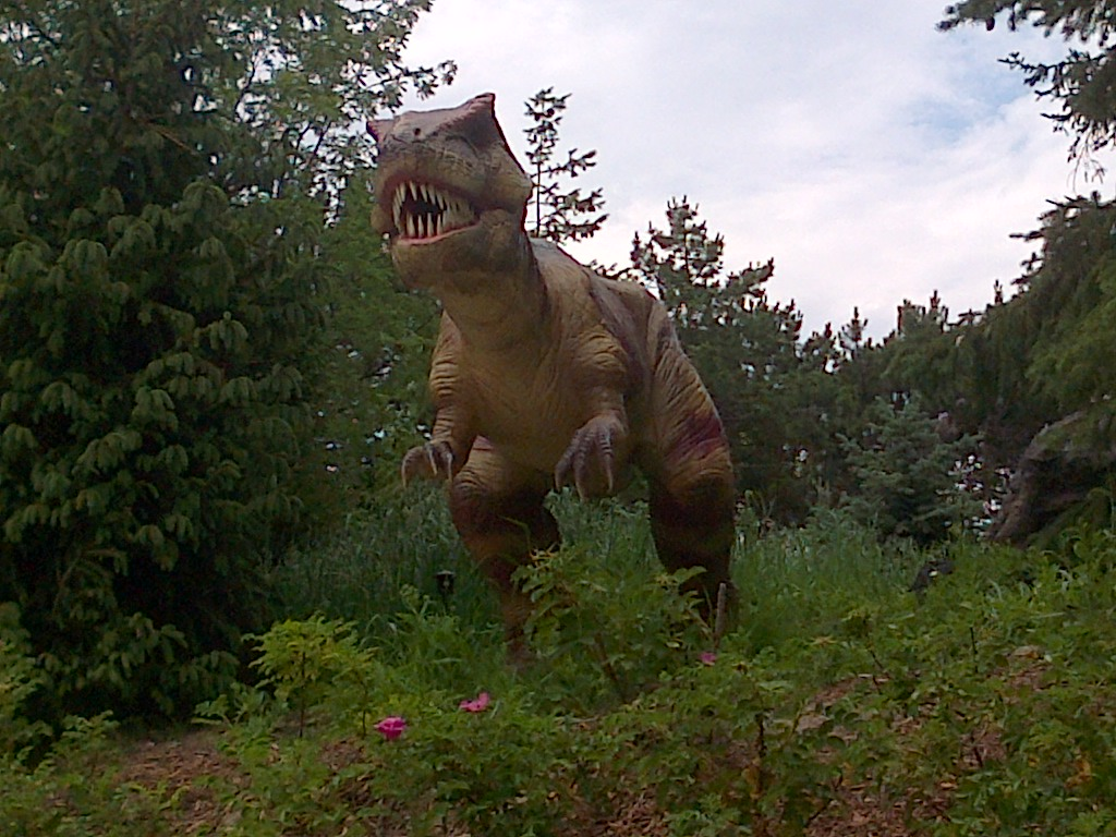 Were the Dinosaurs Killed by a Meteor?